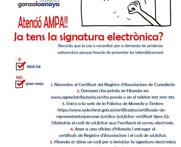 Firma digital-FAMPA-PENYAGOLOSA (003)